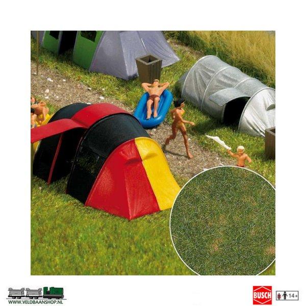 Busch 1303 zomergras bodembedekker Veldbaanshop.nl